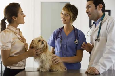 La Fidelizzazione del Cliente nella Pratica Clinica - 15. 19